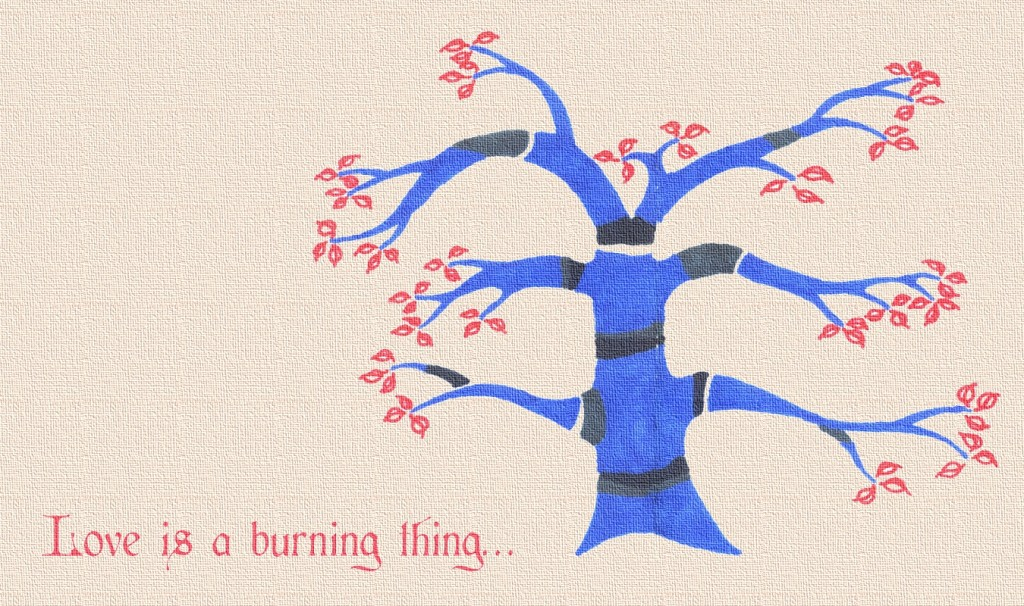Love is a burning thing... (Feb 2013)